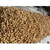 亚腰葫芦种植-工艺亚腰葫芦种子-山东亚腰葫芦供应商