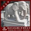 石雕大象 花岗岩大象 石雕大象报价