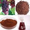 葡萄籽提取物 葡萄籽多酚 抗氧化美容美肤 厂家现货
