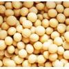 大量求购玉米、大米、高粱、大豆、小麦等酿酒原料