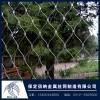 保定不锈钢绳网304不锈钢装饰网河北佰纳厂家直销