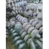 全国各地回收绝缘子、回收钢芯铝绞线