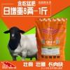 怎样育肥羊长肉快效益好?
