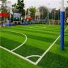 博纳足球场人造草坪