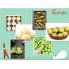 供应各种赵州基地梨产品,品种齐全,多种型号物美价廉