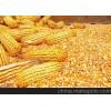 收购大量玉米、小麦、大米