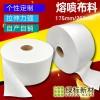 广州熔喷布料批发定制民用医用级25克PFE95熔喷无纺布